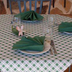 manteles-de-papel-en-cruz-hosteleria-100x100-cuadros-verde-la-pajarita-mapelor