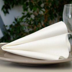 servilletas-airlaid-blancas-40x40-la-pajarita-mapelor
