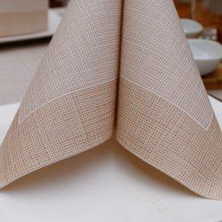 servilletas-airlaid-hilo-marron-40x40-detalle-la-pajarita-mapelor