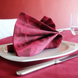 servilletas-airlaid-rosa-burdeos-40x40-la-pajarita-mapelor